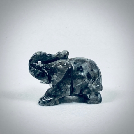 Larvikit elefánt