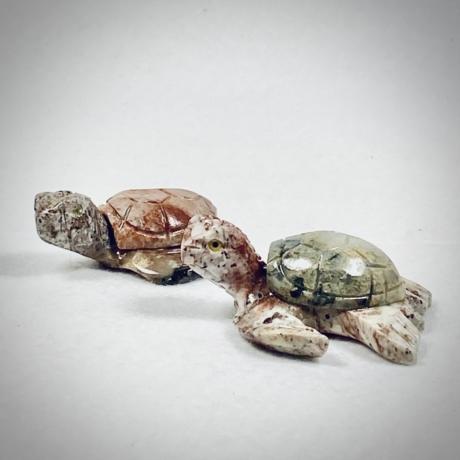 Zsírkő teknős